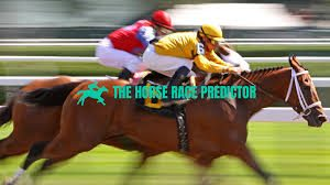 The Horse Race Predictor