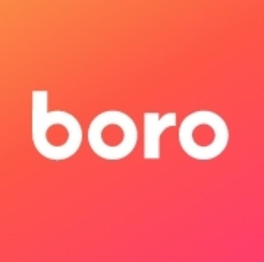 $274 OFF Boro Coupon Code