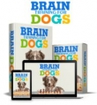 Brain Training 4 Dogs
